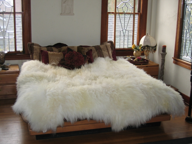 How To Clean A Sheepskin Rug Red Hanger