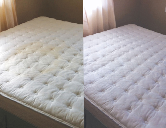 Clean Dried Urine From A Mattress
